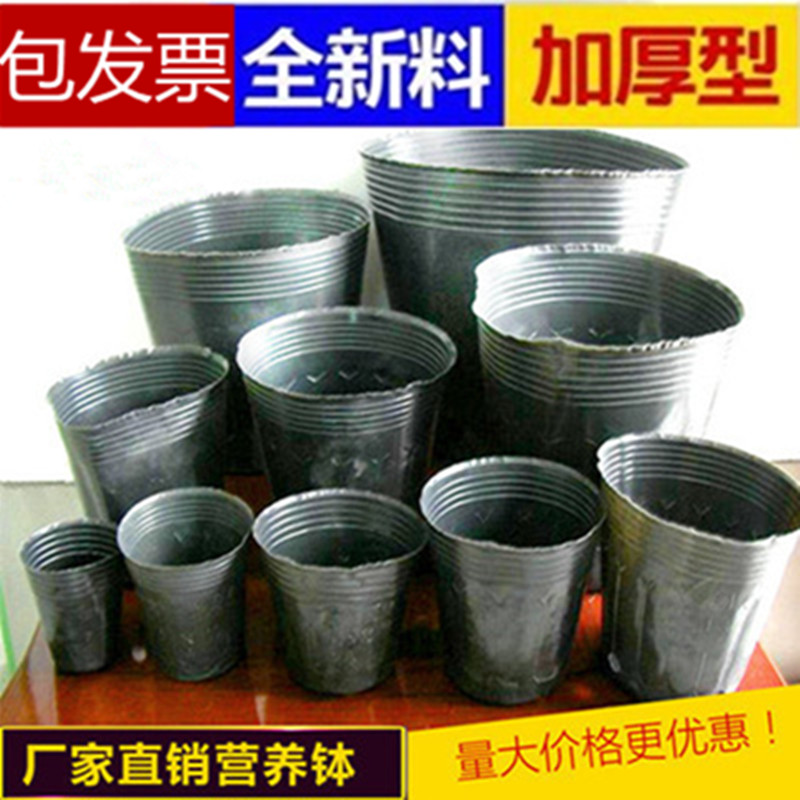 Nutrition nutritional bowl nursery bags nutrition bag hole nursery pots nutrition cup nursery pots planted pots