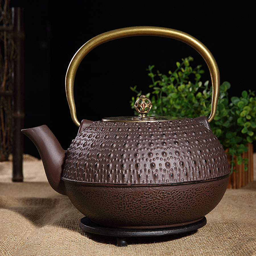 Old passenger tortoiseshell pattern uncoated iron oxide southern old iron pot cast iron pot iron teapot boiling tea kettle