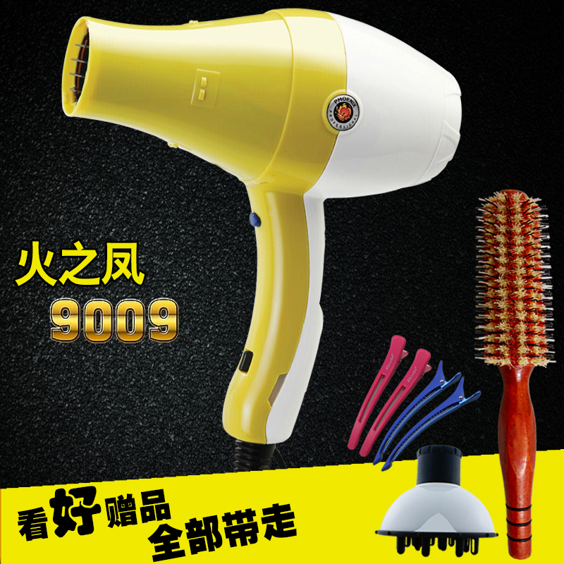 Phoenix fire phoenix 9009 hair salon dedicated power anion hair styling hairdryer hair dryer household power hair dryer hair dryer