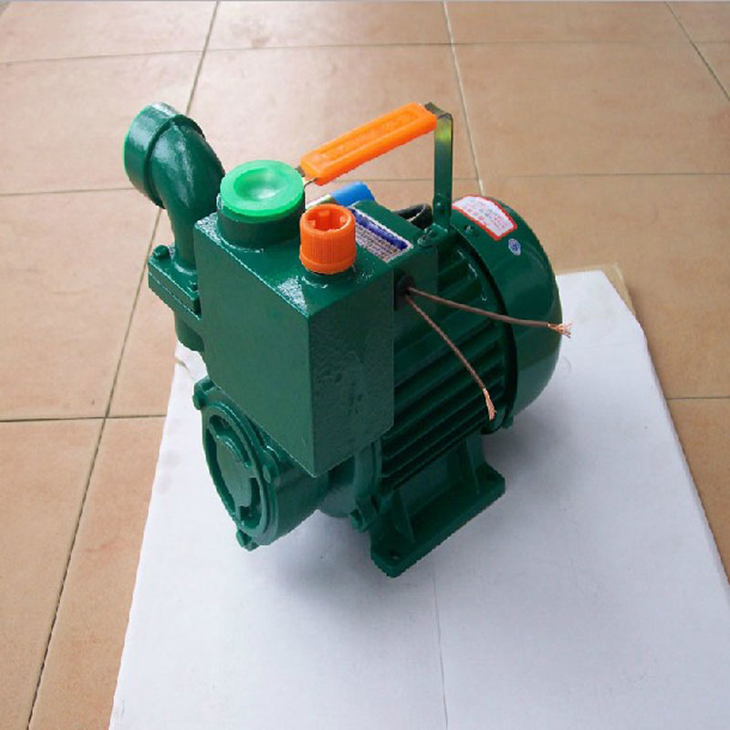 Photosynthetic 1.1kw self priming pump lifted household water pump priming pump well water for agricultural water