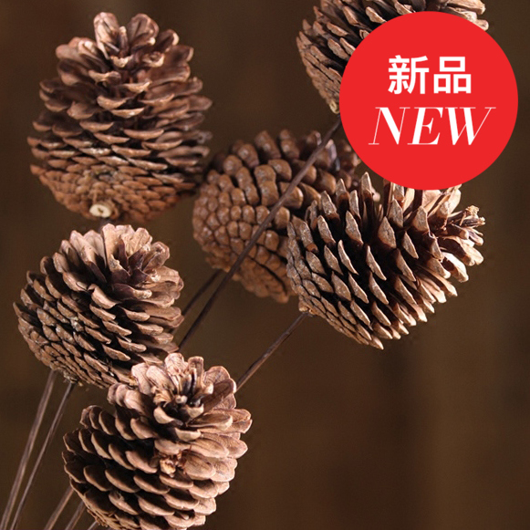 Pinecones and real flowers dried flowers mikie natural dried flowers dried flowers natural living room decorative home furnishings shooting props