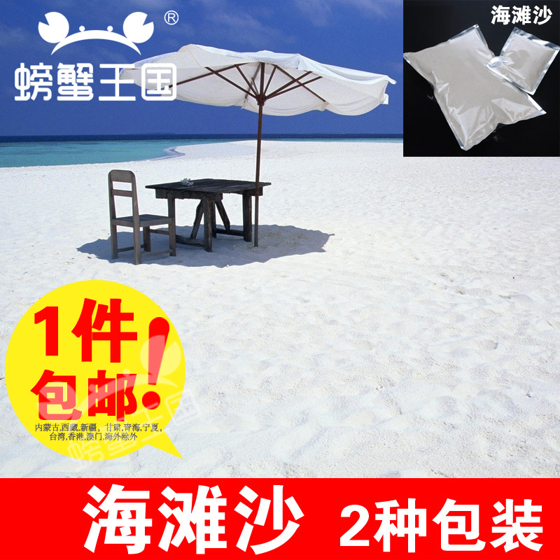 Sand table model building model material moss micro landscape ornaments no pollution original ecology of sand sand sand beaches