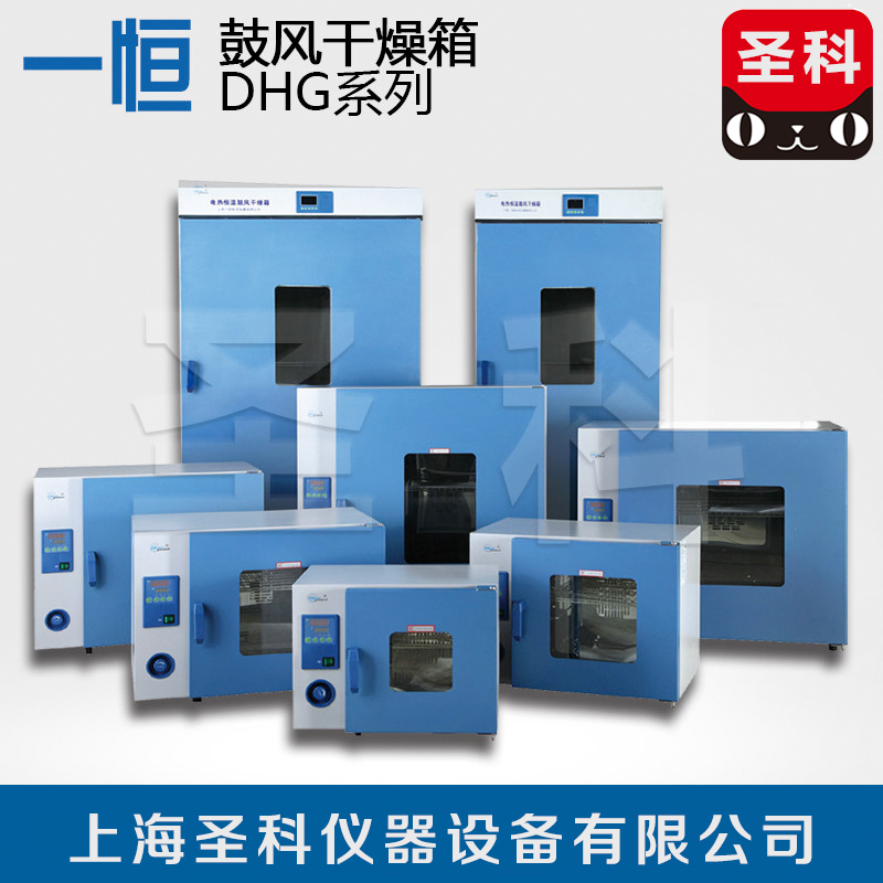 Shanghai a constant DHG-9620A electric blast oven/electric oven/oven/oven/heat box