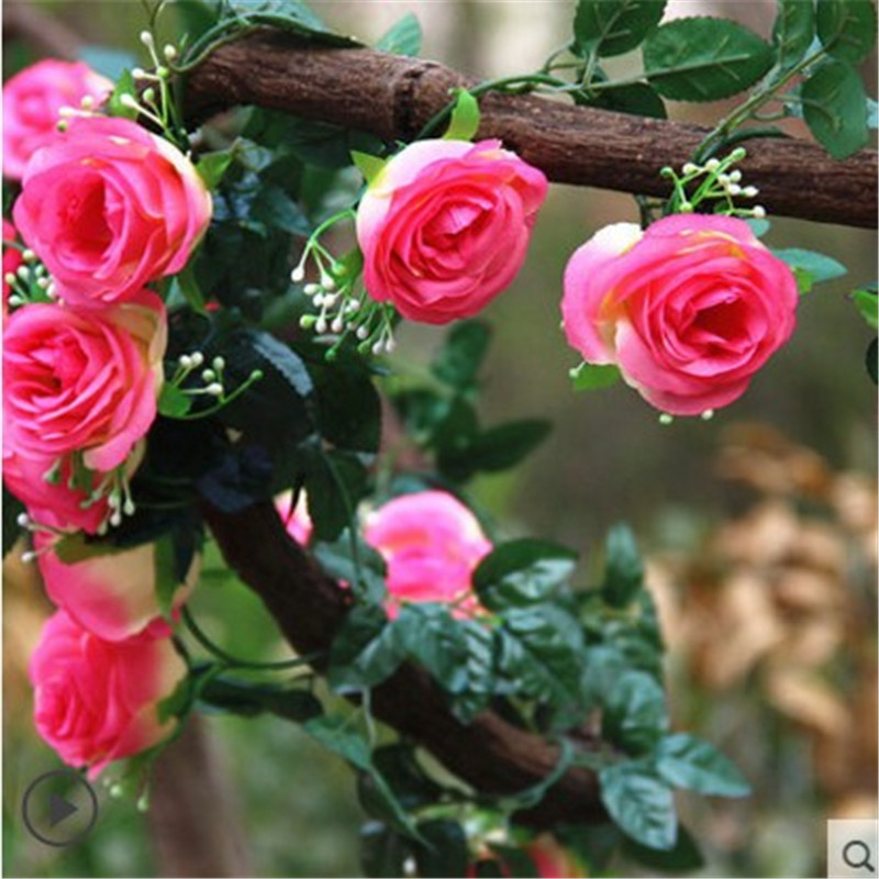 Simulation rose silk flower plastic flower artificial flowers roses rattan air conditioning heating pipes installed decorative flower wall hangings