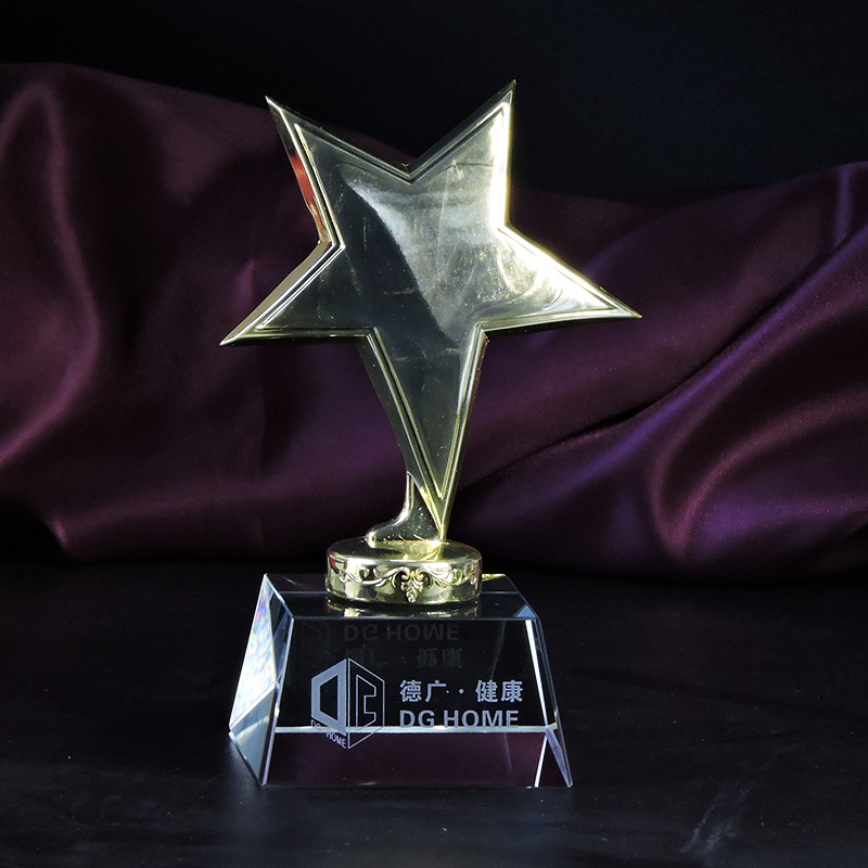 Star trophy custom metal trophy trophy crystal trophy custom small children student competition souvenirs lettering