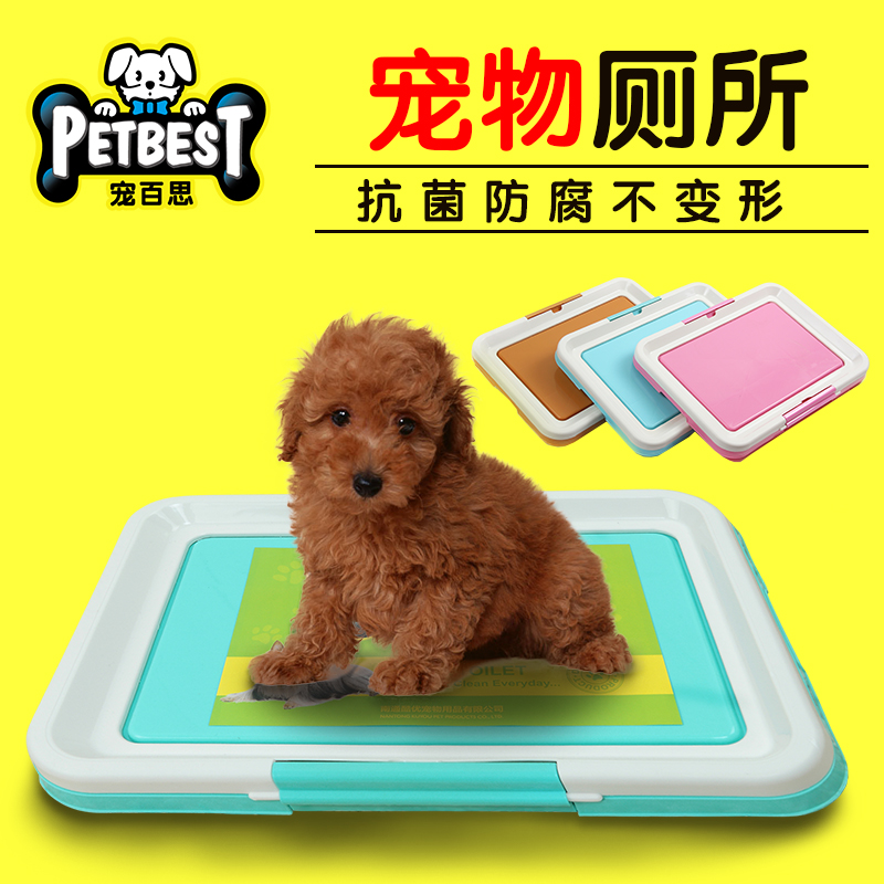 Teddy dog toilet large trumpet dog toilet urinal golden large dogs large dog puppy potty pet supplies tablet