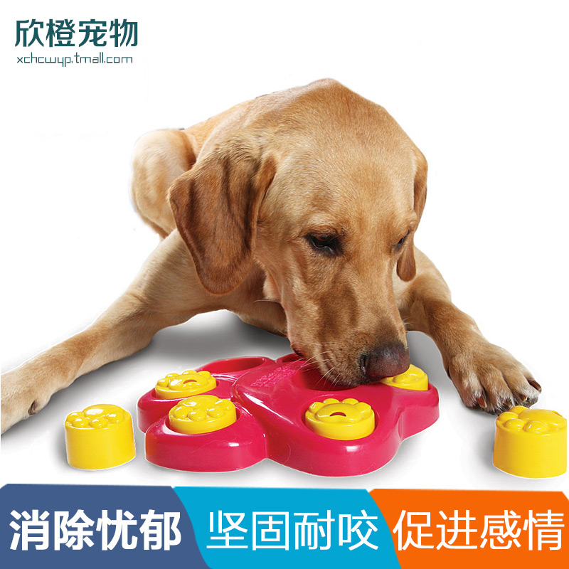 Us kyjen very cool cangzhen educational toys pet toys dog toys bite resistant teddy expensive bienstock toys 24 provinces shipping