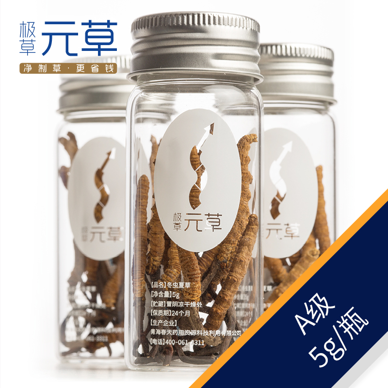Very grass cordyceps ·å…ènet system <gmp standard production cleaner and healthier> a grade 5g/ Bottle