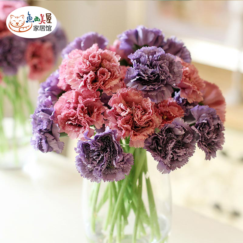 Western us fish house] [euclidian bouquet of carnations simulation living room furnishings home decorations ornaments artificial flowers artificial flowers silk flower