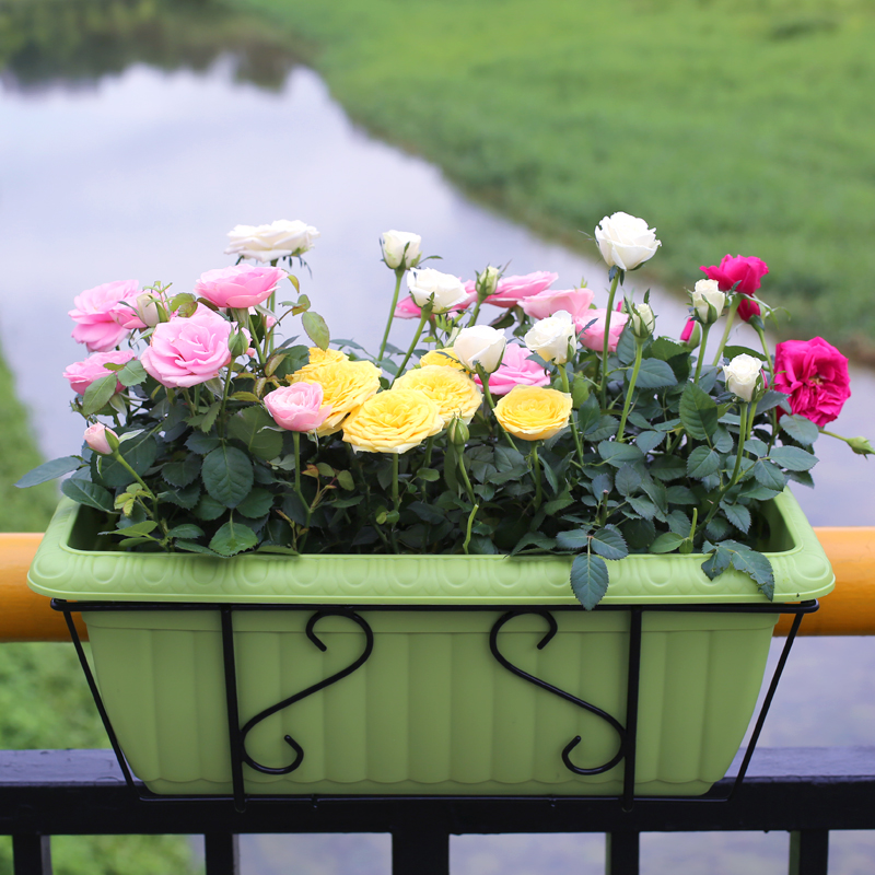 Wrought iron flower pots pots with resin relief elongated basin suit alice balcony kinds value package