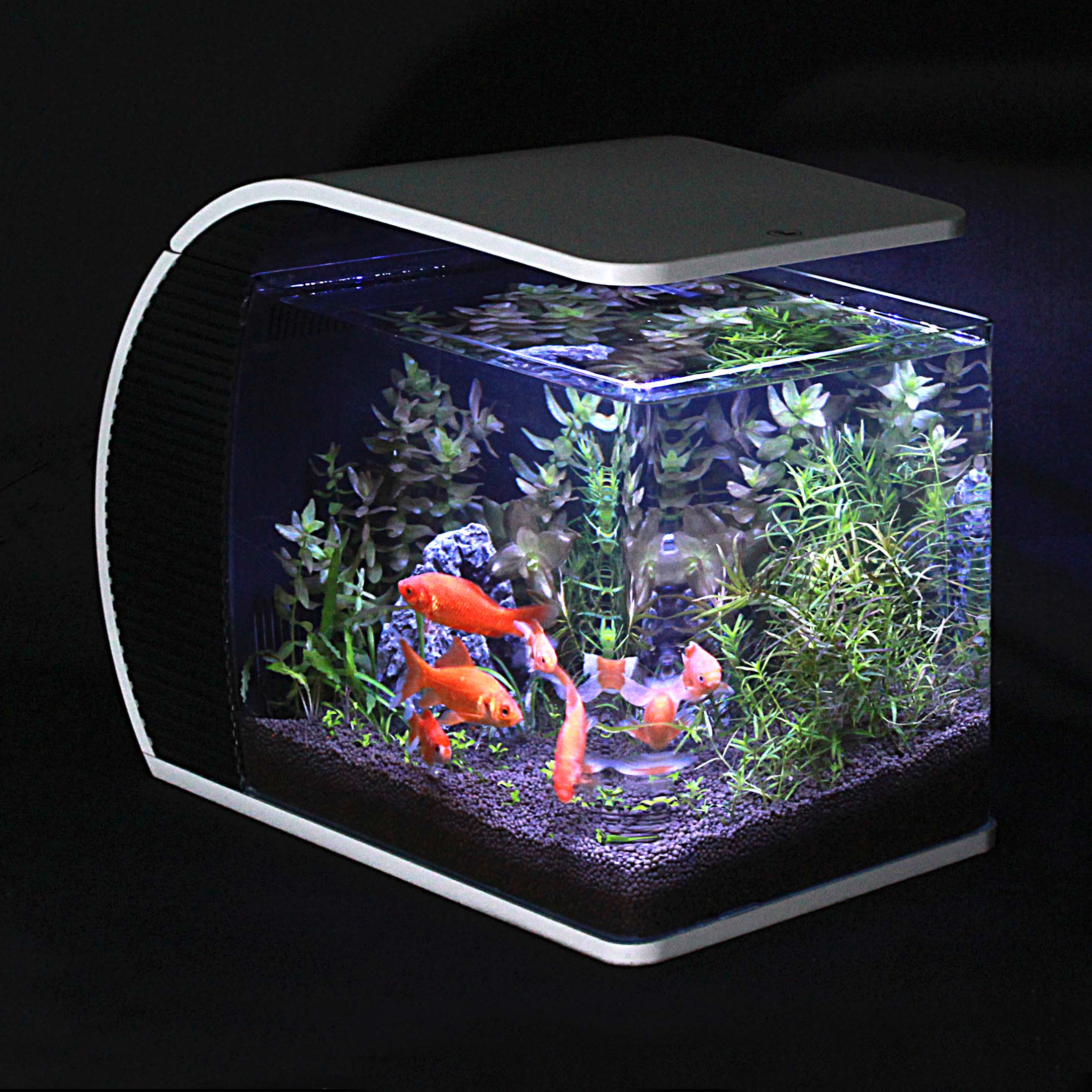 Free shipping ada ya diya tropical aquarium fish tank glass tabletop 50cm level mini aquarium fish tank ecology