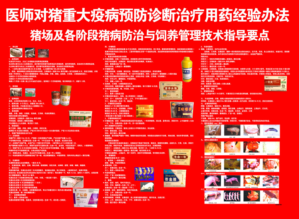 41 posters flipchart poster panels 68 common diseases prevention and treatment of common diseases of the pig