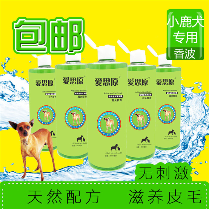 Ace original fawn special shampoo bath pet dog shampoo shower gel 500 ml 》 《 dedicated pet