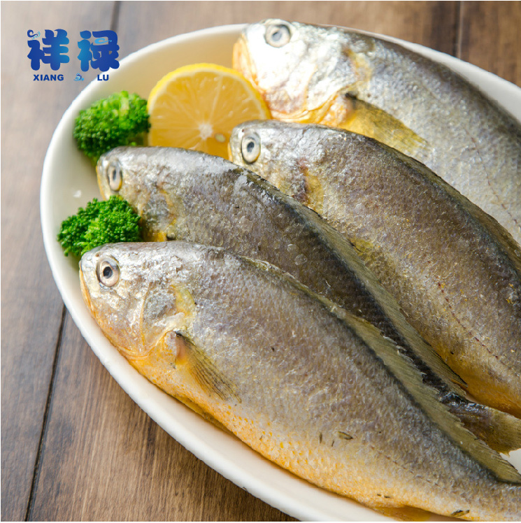 [Andrew paul] zhoushan small yellow croaker small yellow croaker 500g specifications 30 | 50 frozen seafood specialties east croaker