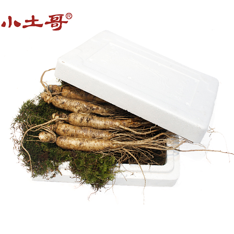 [Aviation shipping] bef0re they little brother soil with soil fresh ginseng soup infuse fresh ginseng fresh fresh long baishan Ginseng gift