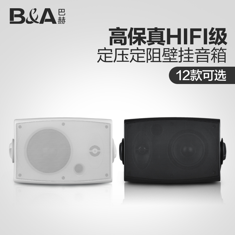 B & a/bach 50 wall speaker stereo loudspeakers campus shop conference indoor wall speaker system
