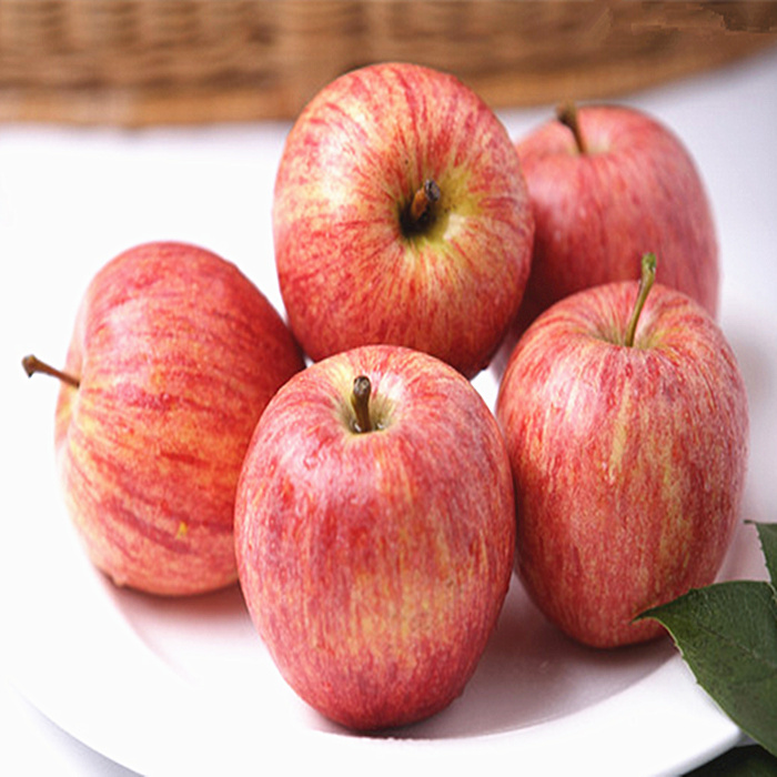 Bai flavor limbus shandong specialty fruit yantai qixia fuji apple 5 loaded own orchards since eating a small apple