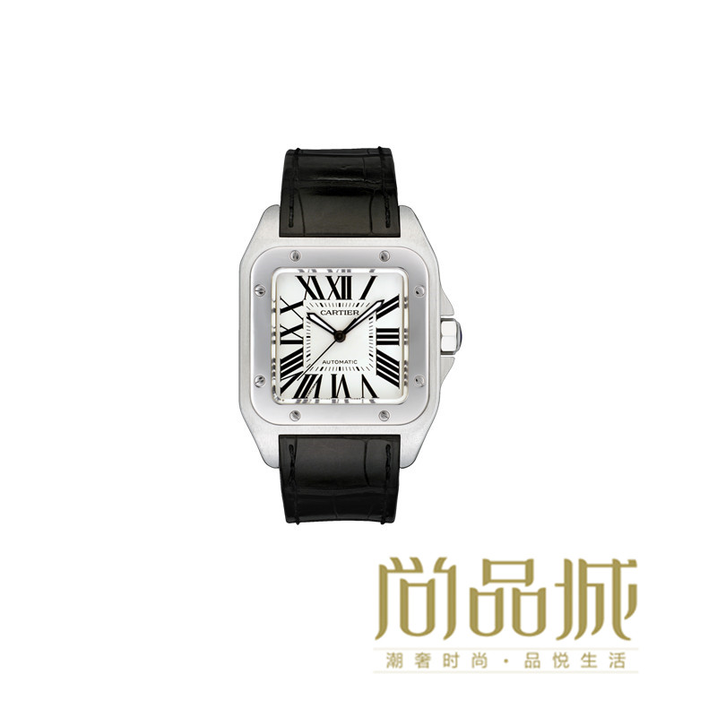 Direct mail authentic cartier cartier 2016 new leather men's watch men watch wrist watch w20073x8 santos