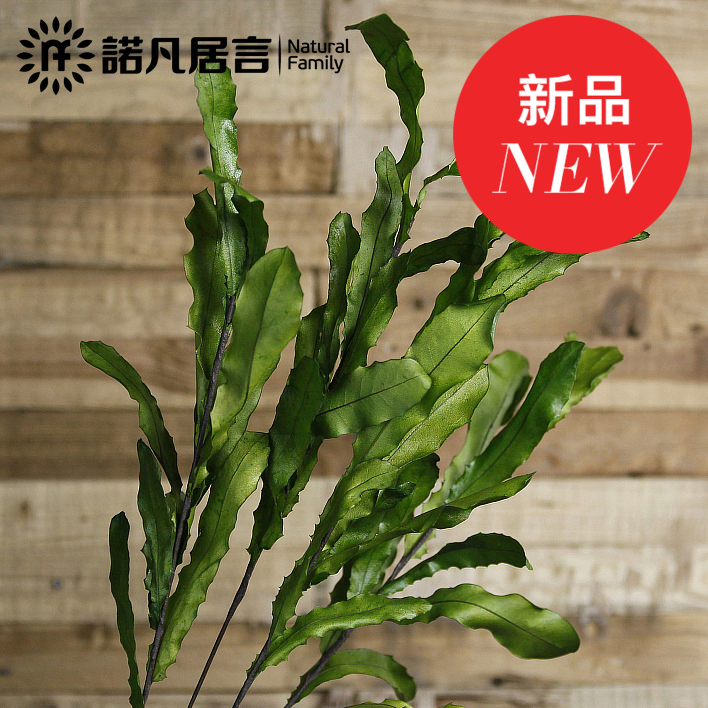 Donovan new nuts leaves artificial flowers flower preservation mikie dried flowers decorate the living room imitation really nosegay floor floral art