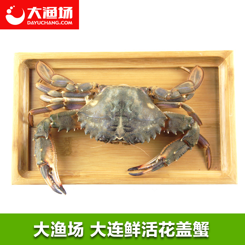 Flowers cover fresh crab and 93 per cent 100只/ kg fresh seafood crab crab fresh seafood dalian flowers cover
