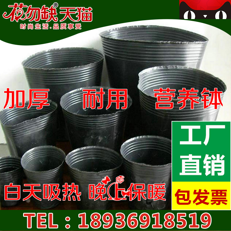 Free shipping nutrition nutritional bowl nursery pots seedling tray seedling nursery pots nursery bags nursery nutrition cup cup flower pot planting pots