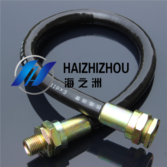 [Industry] haizhou pipe explosion proof flexible connecting pipe threading pipe explosion proof flexible tube rubber dn15 4 points