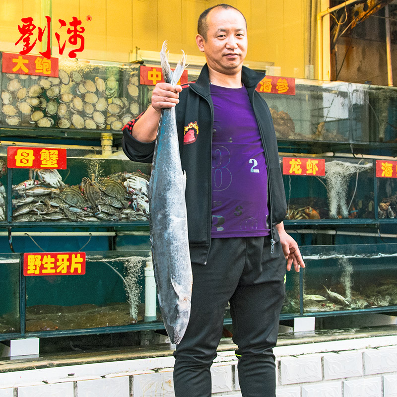 Liu qinghai fresh seafood dalian specialty fish 10 of wild king mackerel mackerel fresh frozen aquatic sea