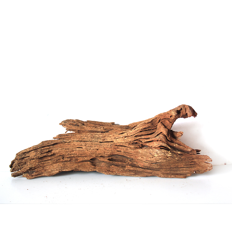 Malaysia driftwood aquarium driftwood landscaping landscaping decorative aquarium plants aquarium landscaping plants moss