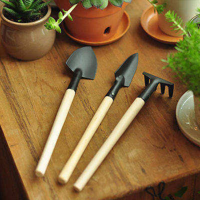 Mini three sets of flowers with a small shovel family vegetable gardening gardening tools and more meat potted flower essential