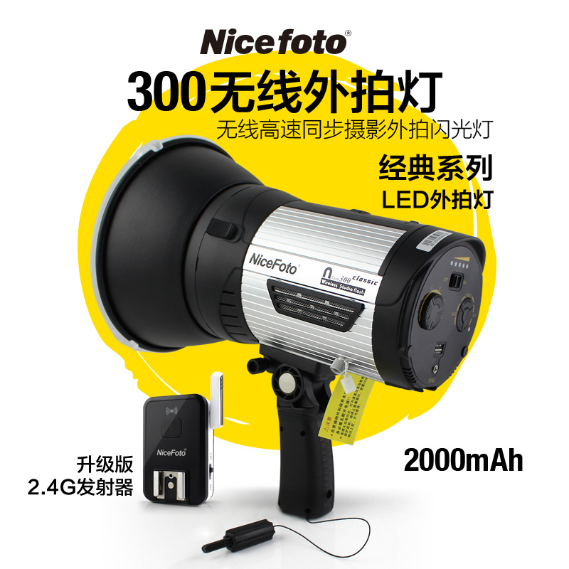 Outdoor Heat Lights China outdoor heat lights china outdoor heat lights shopping guide get quotations naisbitt outdoor photo light outdoor photo shoot 300 white lights modeling lights built in wireless workwithnaturefo
