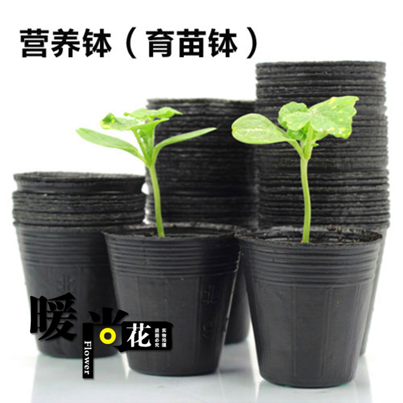 Nutritional bowl nursery bags nursery nutrition cup nursery pots seedling tray planting hole basin bowl disposable pots