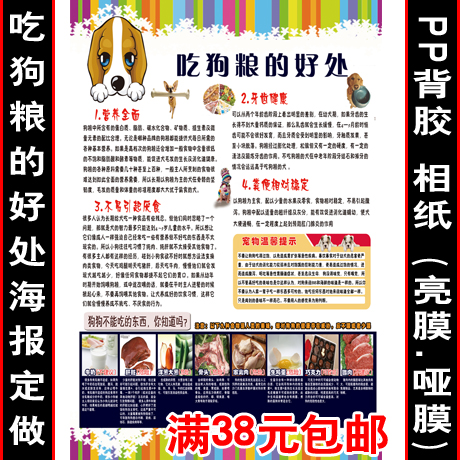 Pet shop dog safety knowledge poster painting decorative painting custom painting the benefits of eating dog food dog dog painting posters customized xz