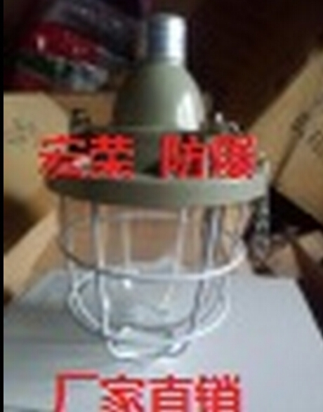 Proof lights bcd-100w flameproof factory direct quality assurance herculite