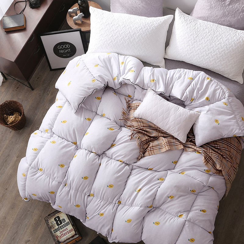 Quilt is the spring and autumn and winter is the core thick warm winter is winter quilt student dormitory mattress single double single air conditioning was
