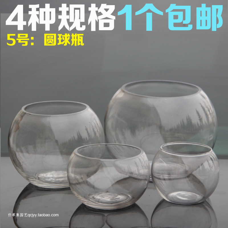 Round glass vase vase creative sphere hydroponic glass bottle micro landscape ecology bottle vase hydroponic plants