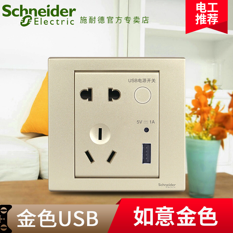 Schneider wishful champagne fifth hole socket usb socket panel with usb charging socket with switch type 86