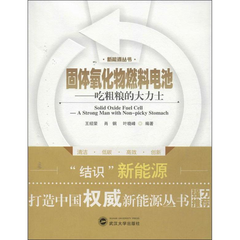 Solid oxide fuel cell technology genuine selling books