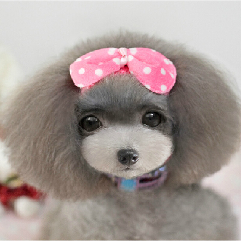 Teddy pet accessories pet dog scarf scarf headgear travelingtowards beauties