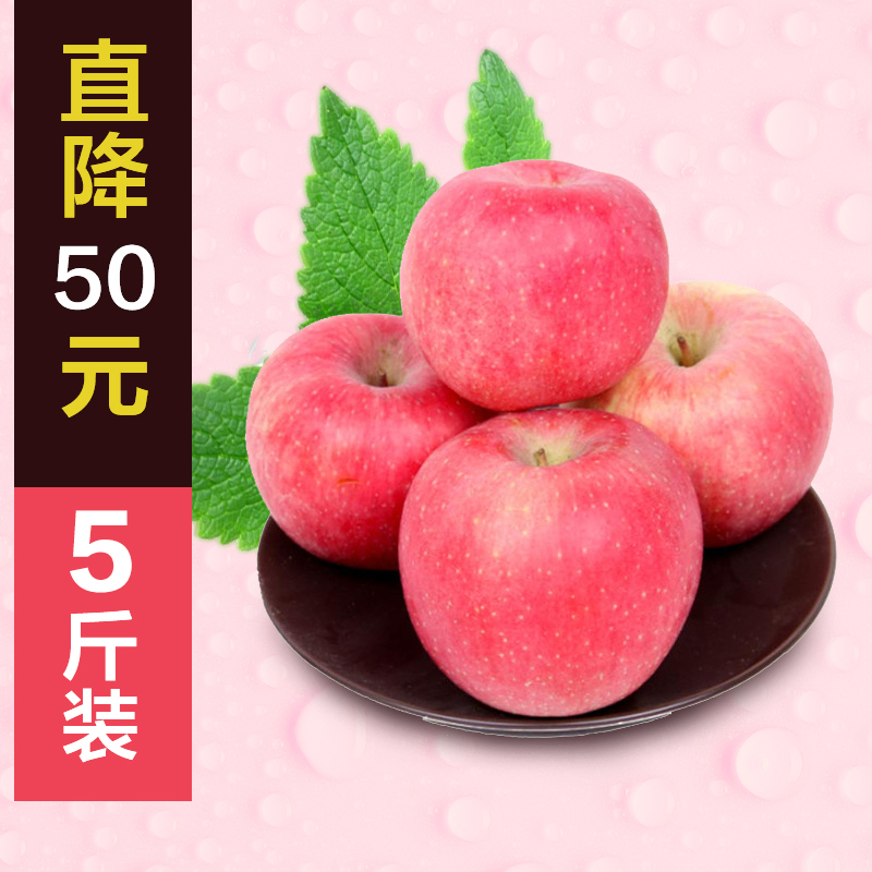 Wyatt concentrated fruit tree fruit qixia shandong yantai specialty 5 of fuji apple fruit gift boxes of fresh special offer free shipping