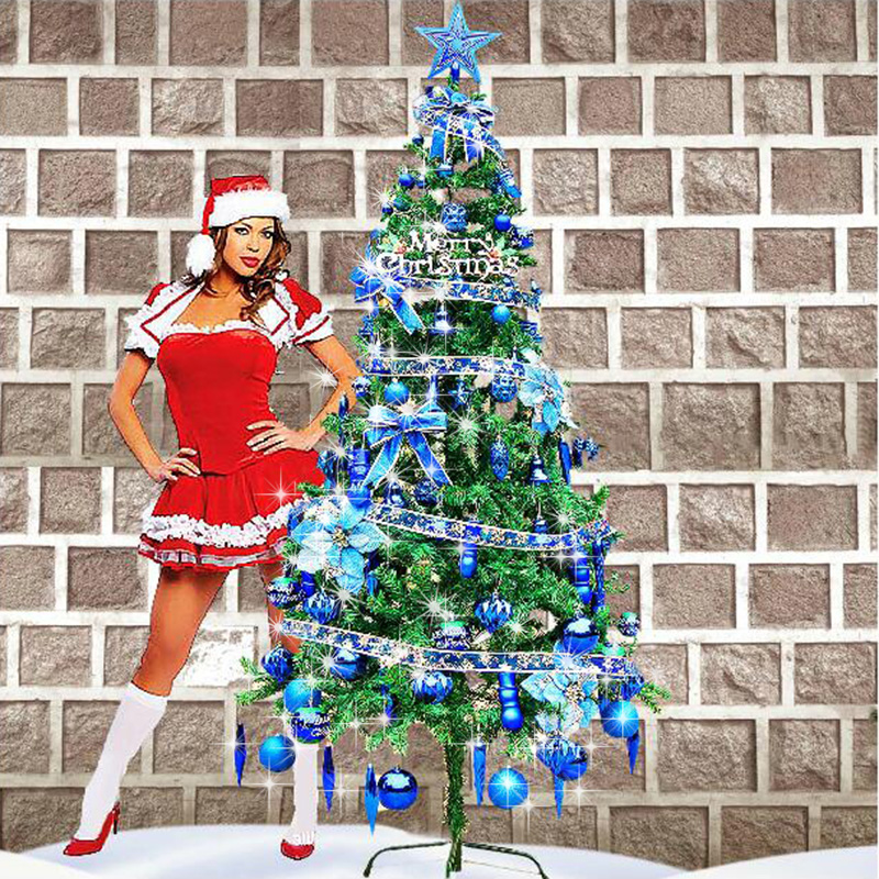 Zhe xi shun blue christmas tree christmas decorations christmas tree package supplies encryption christmas tree decoration