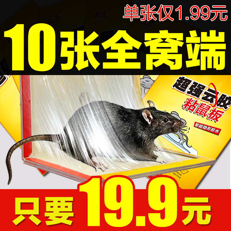 10 zhang pest repeller sticky mouse board super strong sticky mouse stickers household mousetrap rodent control rat cage rat glue medicine folder Is