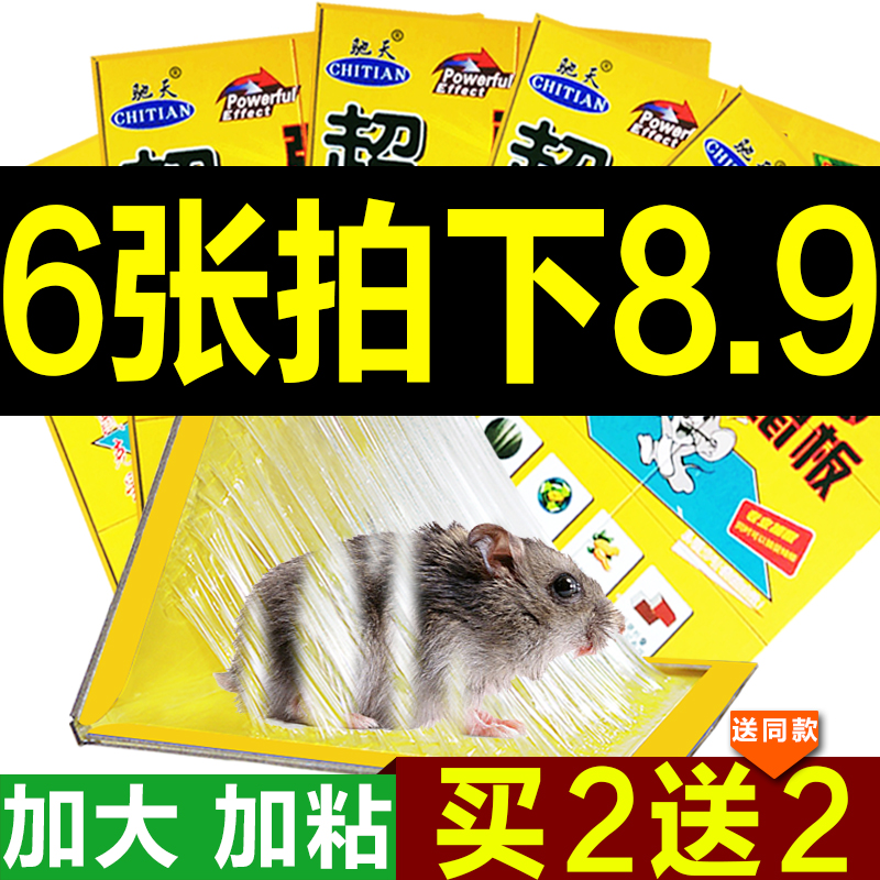 6 zhang pest repeller sticky mouse board super strong sticky mouse stickers household mousetrap rodent control rat cage rat glue medicine folder Is