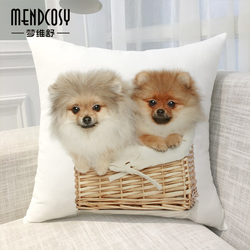 Animal dog pomeranian office nap pillow car sofa cushion covers pillow to send a friend a gift