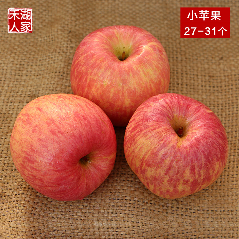 Authentic qixia shandong yantai red fuji apple fresh apple fruit apple red fuji marsiliaceae fruit 10 kg wholesale small apple