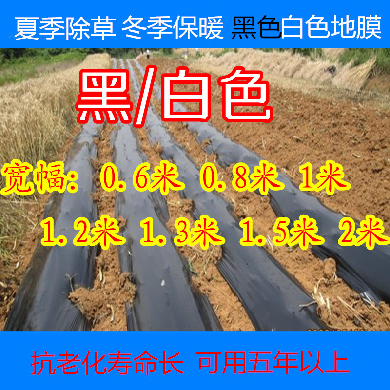 Black plastic mulch film black film black film agricultural film big films vegetables cover film