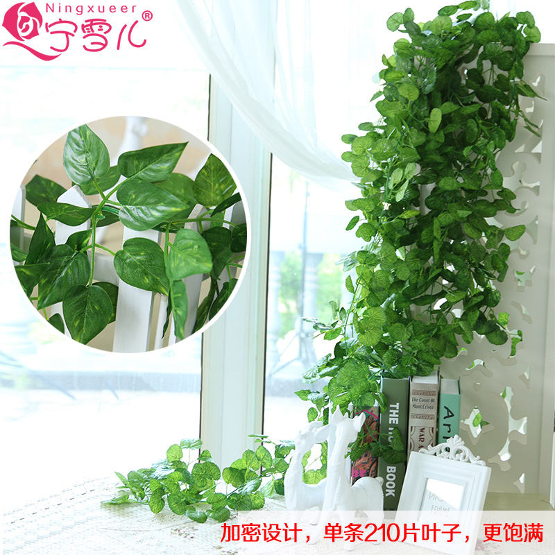 Cher rather-fake artificial flowers rattan ceiling air conditioning ducts decorative flower vine ivy green leafy green radish plants