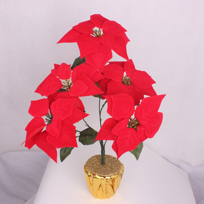 Chong jubilee 5 potted flower potted poinsettia christmas decoration red velvet christmas flowers simulation landing place to put