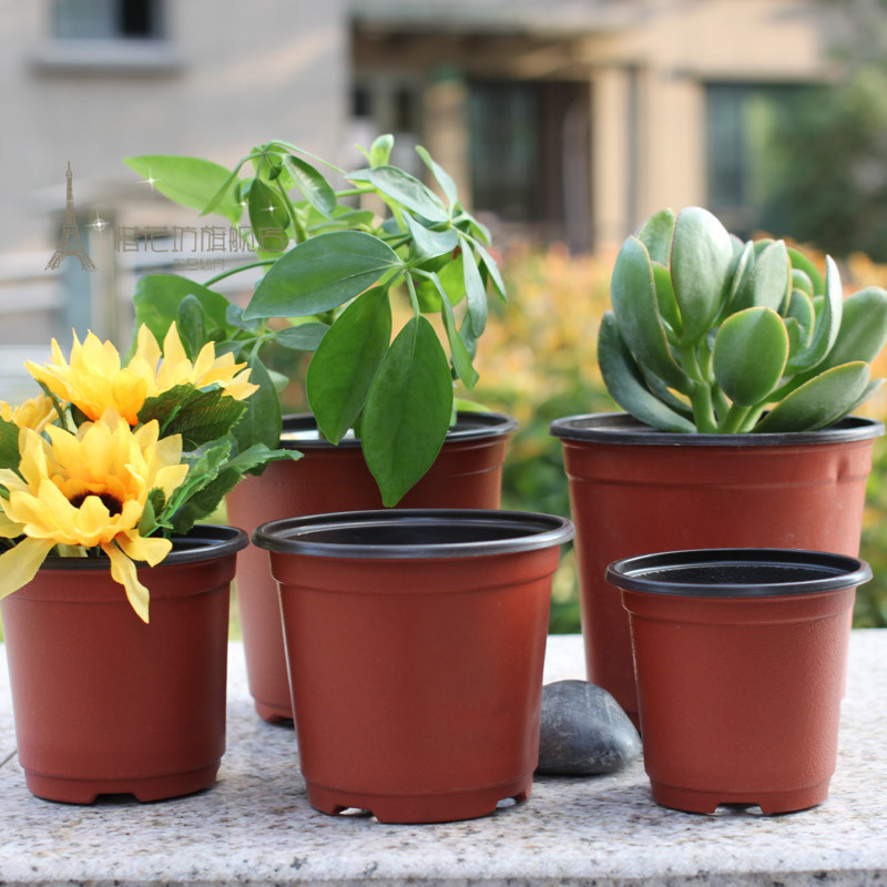 Color plastic pots pots pots wrestling is not a bad nursery pots planted pots gardening pots vegetables