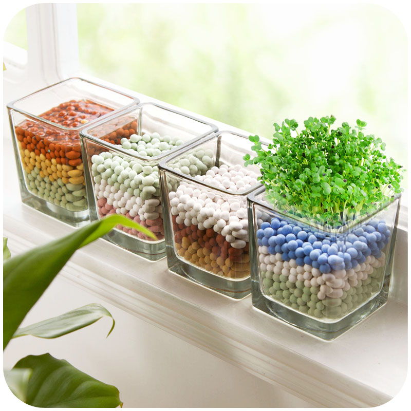Creative desktop ornaments small potted plant mini office small indoor bonsai seeds bottle micro landscape ecology