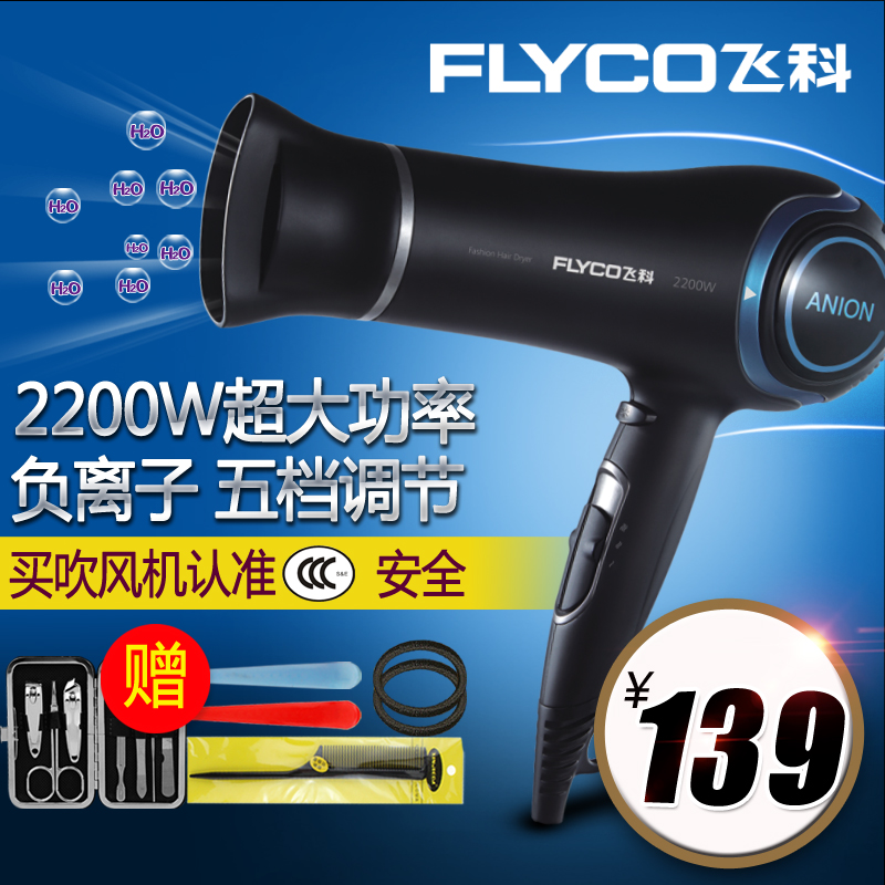 Flying branch fh6220 hair dryer anion hair dryer cold wind power conditioner exclusive power hair dryer